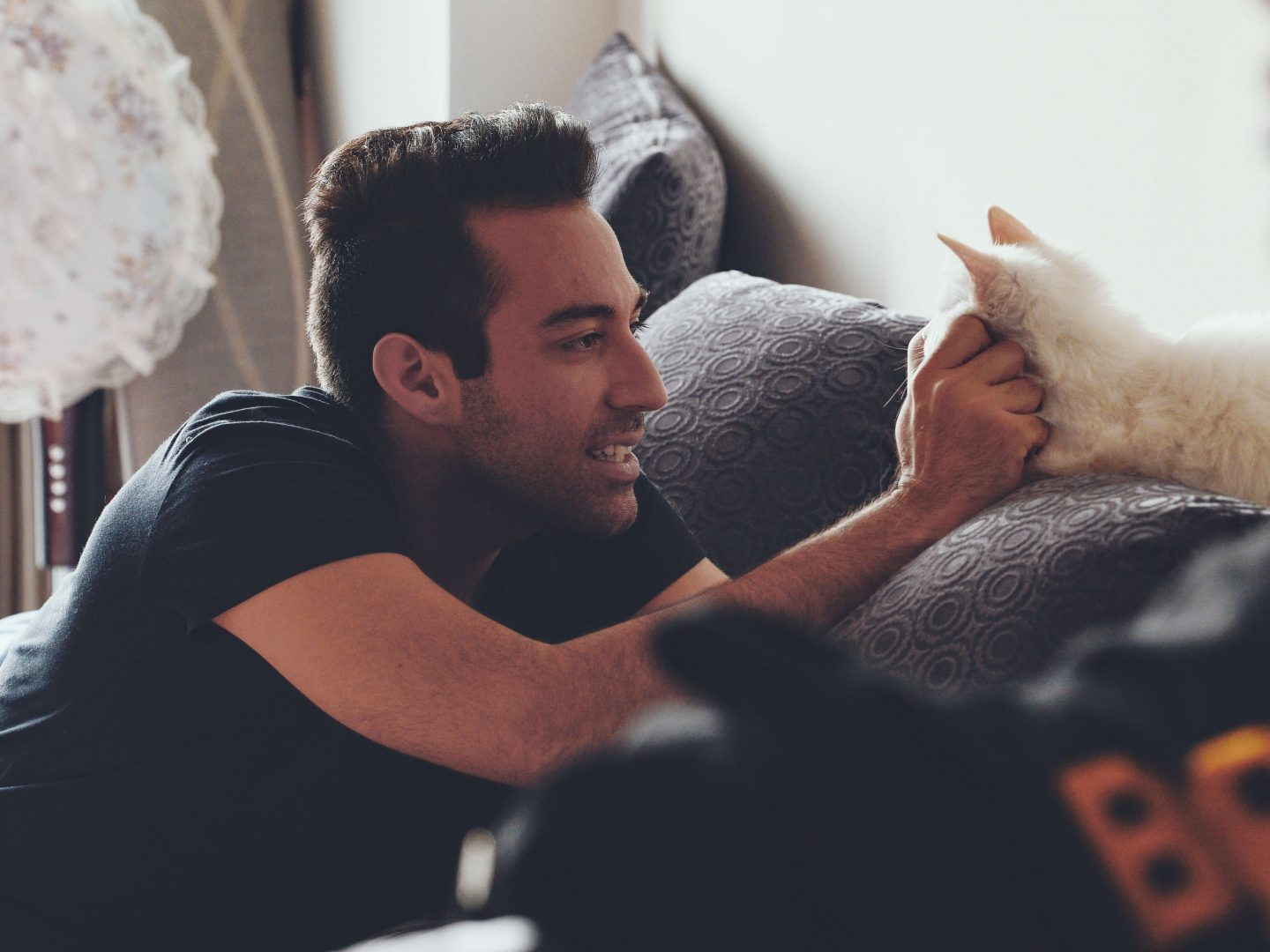 Petting a cat won't kill your productivity. Actually, it may boost it.