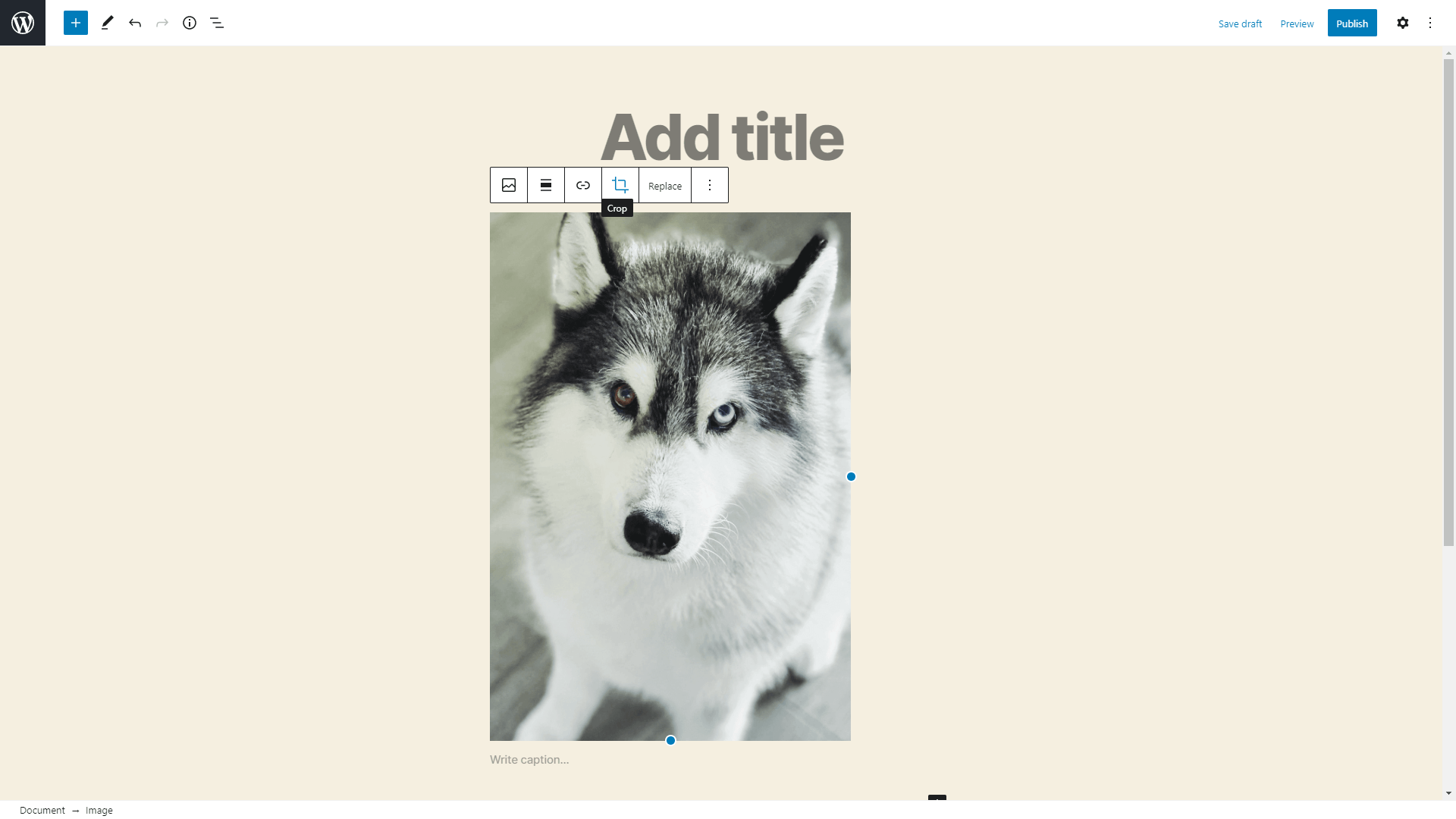 This upgrade allows you to crop, rotate, and zoom your images within the image block.